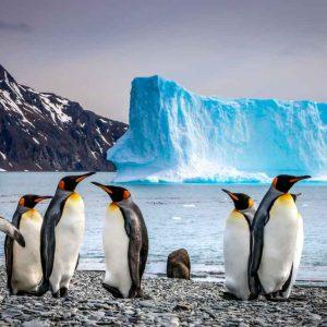 © Aurora Expeditions, SCOTT DENZEL