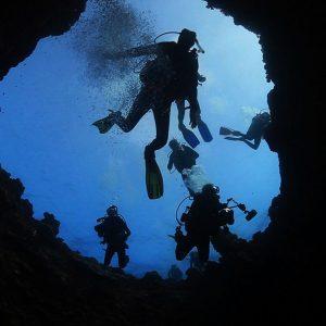 © Lady Elliot Island Eco Resort - Australia Tourism
