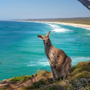 © Tourism Australia  - Mark Fitzpatrick