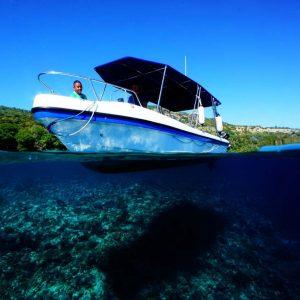 © Dive Timor Lorosae