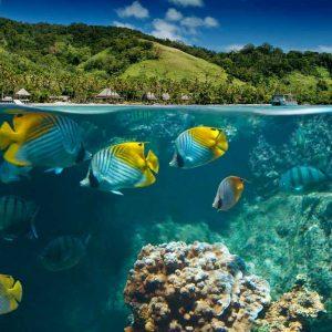 © Lalati Resort and Spa - Fiji