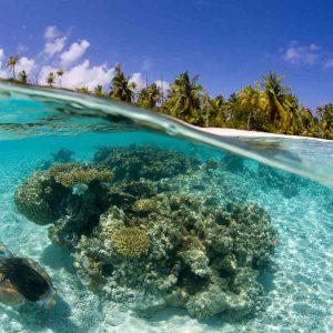 © Jordi Chias, Tahiti Nui Travel
