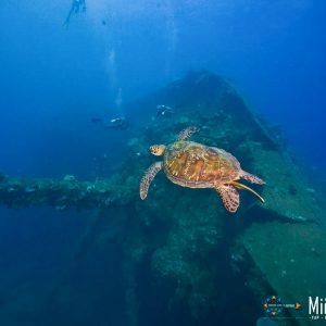 © Chuuk Visitors Bureau-Tim-Rock