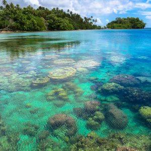 © Tawali Dive Resort