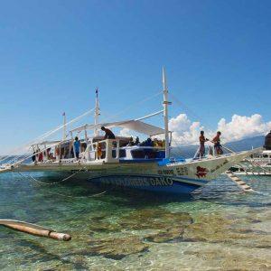© Pura Vida Dauin - Sea Explorers