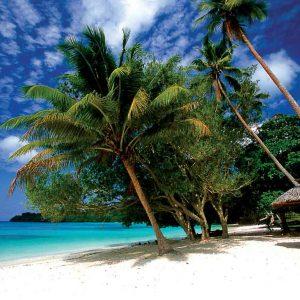 Vanuatu - Tourism - Overwater - Beach Lonnoc-VAN331
